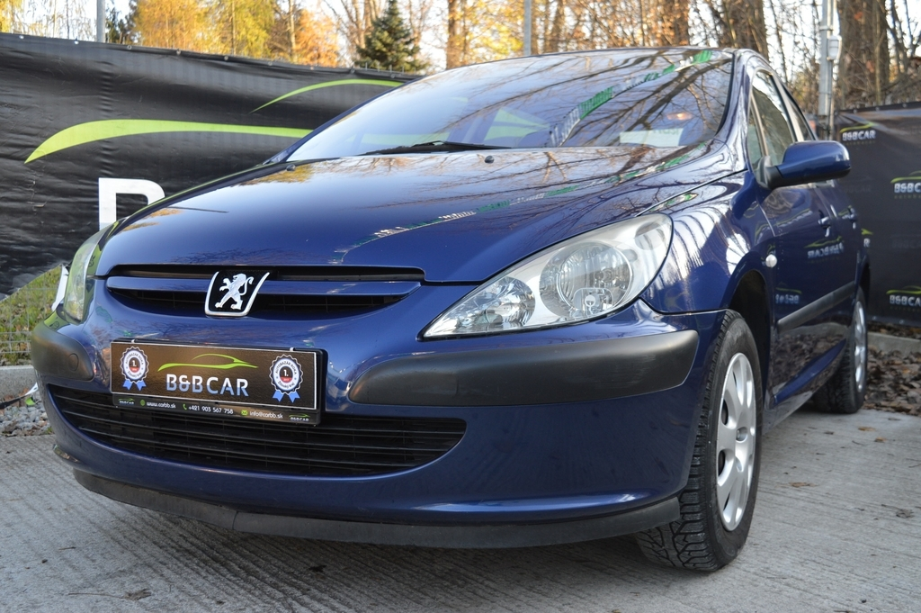 Peugeot 307 1.6i 16V XS