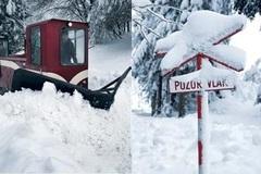 Výluka Oravskej lesnej železnice