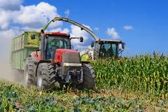 Napriek suchu bude úroda ovocia a zeleniny nadpriemerná