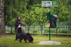 Tomu sa povie luxus! V parku na Bôriku budú mať psy svoje vlastné WC