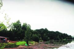Odpadky po prívalových dažďov plávajú do Vodného diela