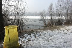 Labutie jazero láka labute aj neporiadnych ľudí