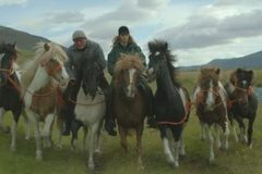 Premietanie Scandi 2019: O koňoch a ľuďoch