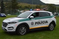 Kysuckí policajti zaistili luxusný mercedes: Šofér (62) nafúkal tri promile, FOTO