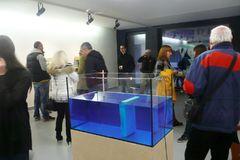 Galéria Plusmínusnula predstavila Kovy