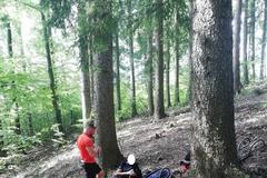 Záchranári pomáhali zranenému hubárovi, poštípanému turistovi museli privolať vrtuľník