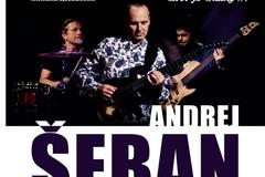 Koncert Andreja Šebana