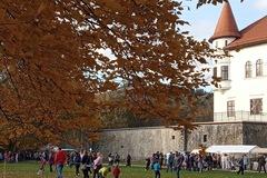 V kaplnke Budatínskeho hradu vystavujú zberateľské novinky: Pozrite sa, čo pribudlo do múzejných zbierok