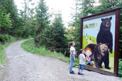 Medvedia cesta na Liptove
