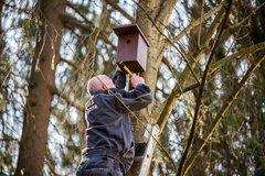 Vtáčie búdky spestrili areál Žilinskej univerzity