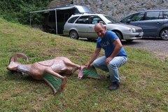 Neželaná návšteva na lukostreleckej trati: Medveď zničil jeden z terčov