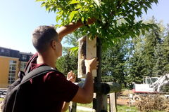 Gymnazisti na letnom kempe vyrábali hmyzie hotely
