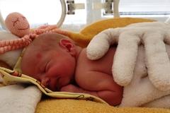 Žilinská pôrodnica čoraz populárnejšia. Počet rodičiek neustále stúpa a zlomil už aj minuloročný rekord