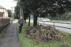 Nebezpečné stromy orezali, konáre nechali tak