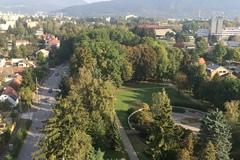 Stromy v parku na Bôriku rúbu z dôvodu vegetačných úprav