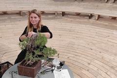 Bonsajistka: Stromy určitým spôsobom dokážu komunikovať